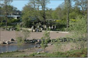 p 2009munmaksakerho8